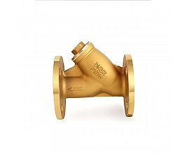 6 inch Brass flange filter