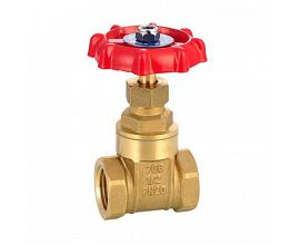 Popular Brass Gate Valve
